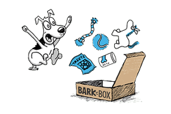 Illustration of an excited dog with a BarkBox
